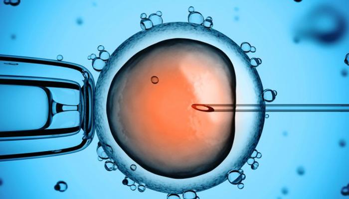 IVF (In-VitroFertilisatie)